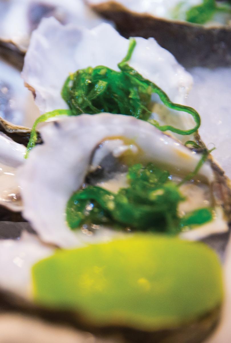 brisbane's greek club and the best food in Brisbane